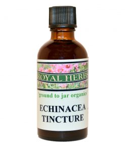 Echinacea-Tincture-Royal-Herbs