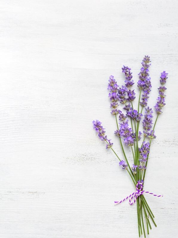 Royal Herbs Lavender